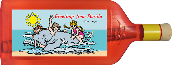 Greetings from Florida -Manatee